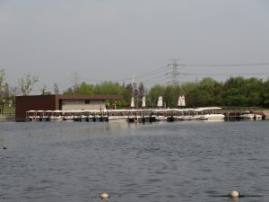 上海辰山植物園の池