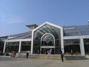 上海植物園の展覧温室