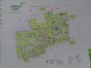 上海植物園の園内図